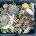 USDA and FDA combat food waste in the U.S.