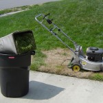 Green waste: Oxymoron of the day?