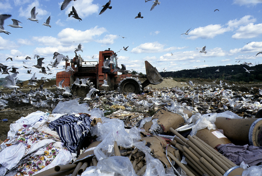 Epa report rates of municipal solid waste generation flat
