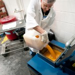 Ocean County, New Jersey begins cooking oil recycling