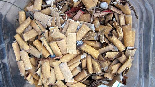 cigarette butts bin