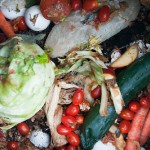 New York City will heat homes with biogas made from food scraps