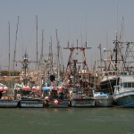 Wasteful commercial fishing practices could damage ecosystems