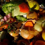 Austin introduces innovative organic waste recycling program